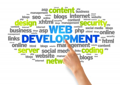 Laren Net Works website development process